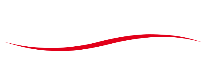 elexxion Logo white